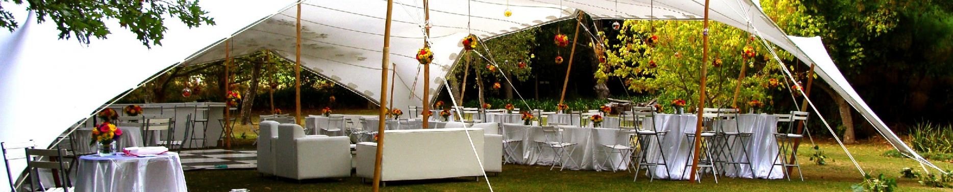 Tentickle-Hochzeit-4_klein-e1532606092446