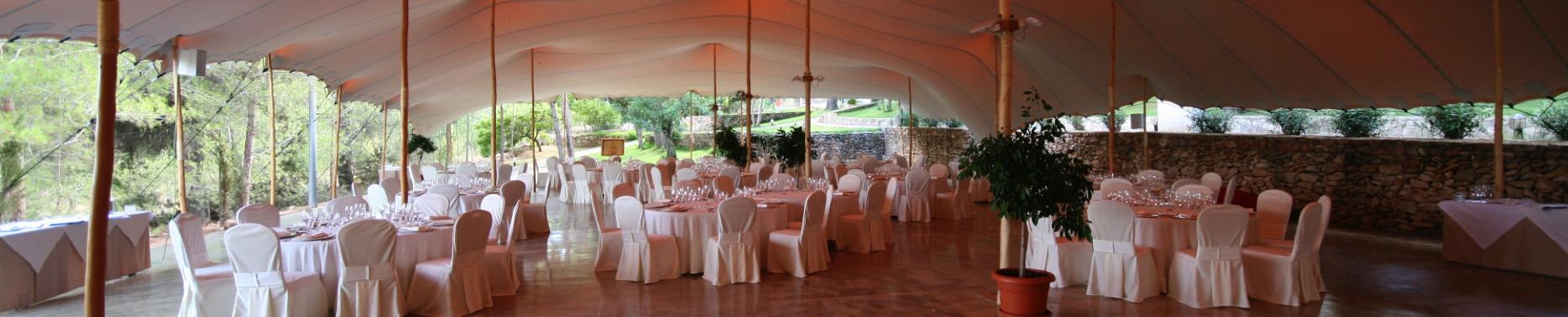 Tentickle-Hochzeit6_klein-e1532605038400